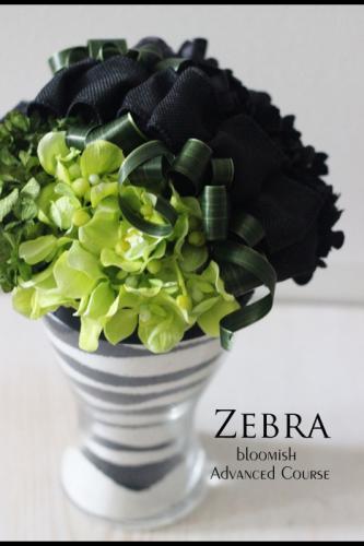 zebura